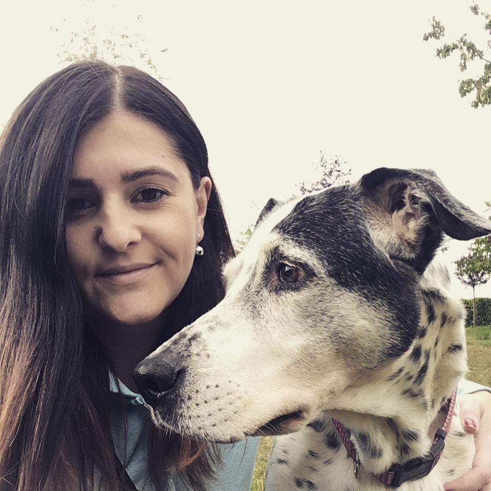 Příběh Forbarf.cza zdravého psího seniora